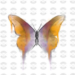 Farfalla tatuaggio