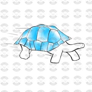 Tartaruga tatuaggio