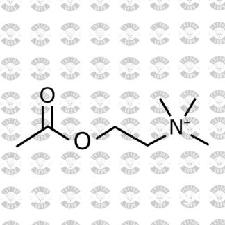 Tattoo Acetycholine
