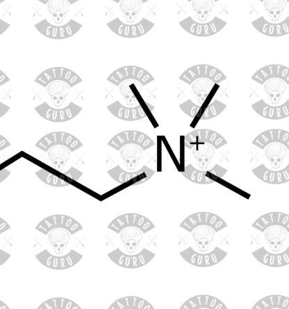 Tattoo acetylcholine zoom 1